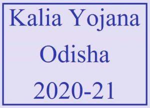 Odisha KALIA Yojana 2021 | Odisha KALIA Scheme Beneficiary List