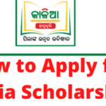 "kalia scholarship 2021""Apply online @ Scholarship Odisha gov in"